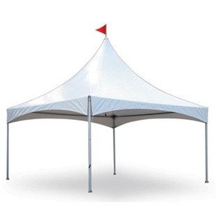 Staging / Tents / Dance Floor